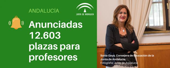 Andalucía anuncia convocatoria de 12.603 plazas de profesores para los próximos tres años - Academia CLAUSTRO