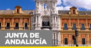 Administrativos Junta de Andalucía - Disponemos de temarios y tests propios y exclusivos para nuestros alumnos - Academia CLAUSTRO en Sevilla