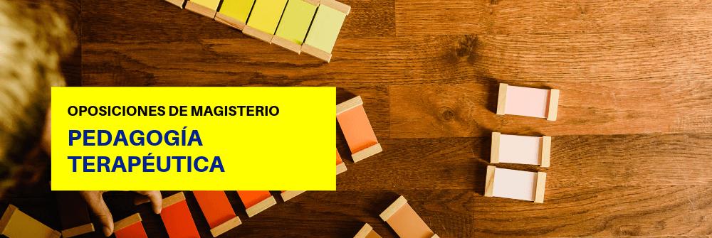 Pedagogía Terapéutica Magisterio - Academia CLAUSTRO